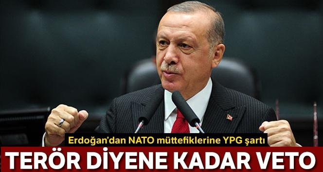 Cumhurbaşkanı Erdoğan: Terör demezseniz biz de veto ederiz