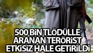 İçişleri Bakanlığı: 'Bitlis'te etkisiz hale getirilen 3 teröristten birinin gri listede yer aldığı belirlendi'
