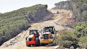 Erdek halkı: Kapıdağ ormanları talan ediliyor