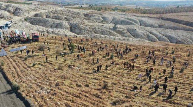 Gaziantep'te, 30 bin öğretmen için 30 bin fidan toprakla buluşturuldu