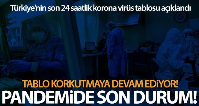 Son 24 saatte korona virüsten 185 kişi hayatını kaybetti