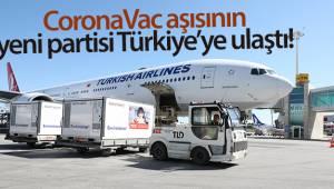 CoronaVac aşısının yeni partisi Türkiye'ye ulaştı
