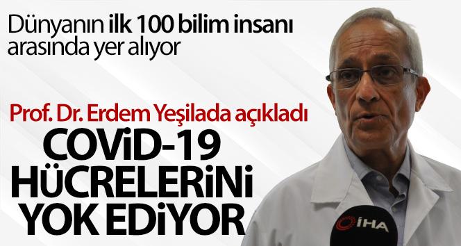 Prof. Dr. Erdem Yeşilada: 'Covid-19 hücrelerini yok ediyor'