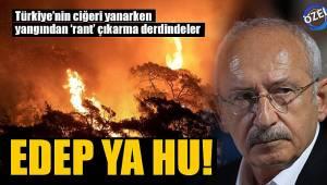 Türkiye'nin ciğeri yanarken yangından 'rant' çıkarma derdindeler